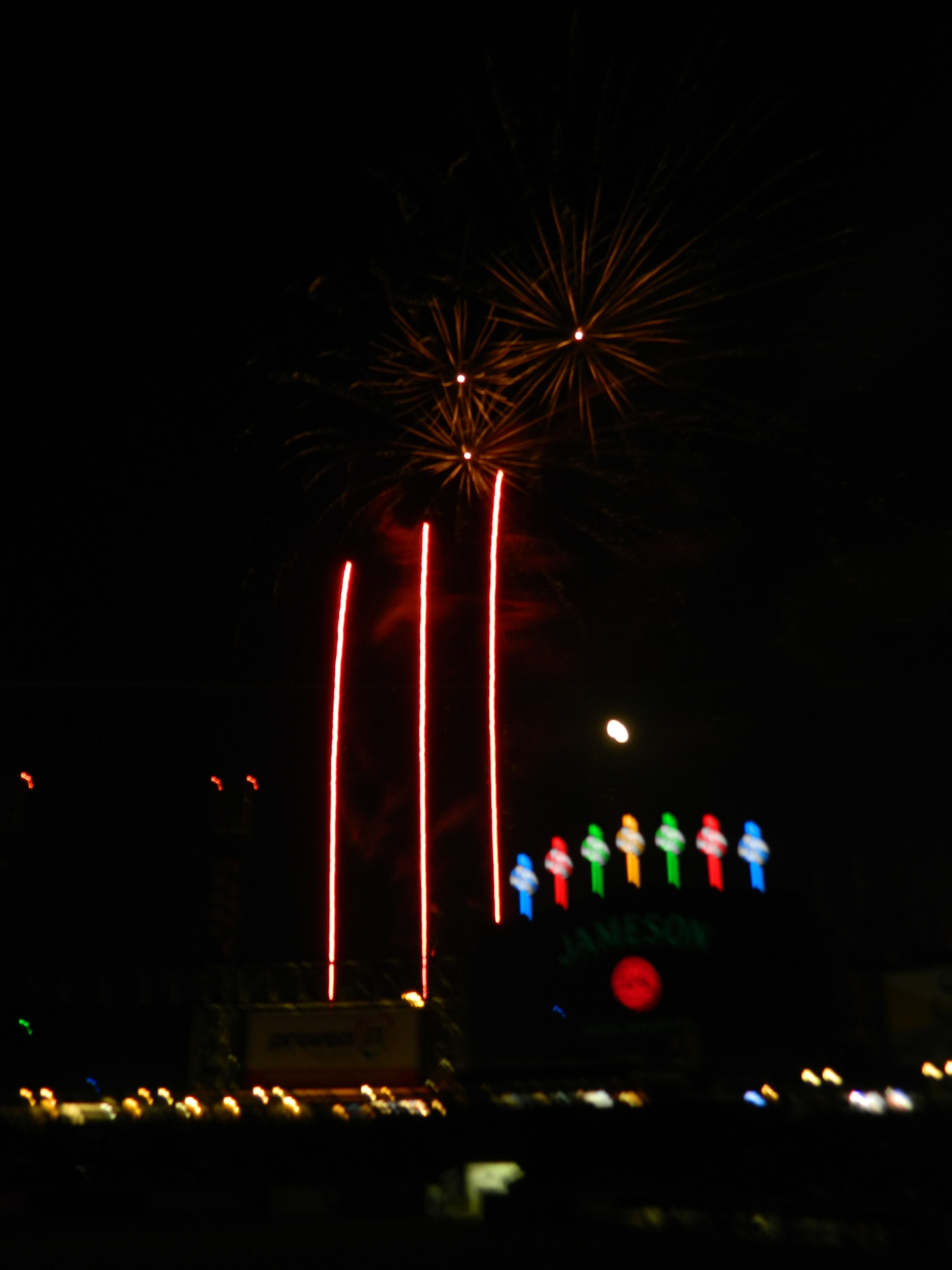 IAA Picnic-Sox 2017 098