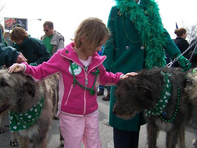 Brogan & Wolfhounds